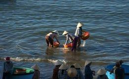 Leute säubern Meeresfrüchte auf Strand Lizenzfreie Stockfotografie