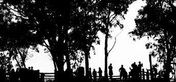 Leute silhouettieren im Farbschwarzweiss-Isolat Lizenzfreies Stockbild