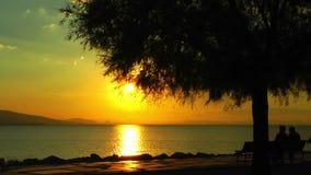 Leute silhouettieren nahe der Küste im Sonnenuntergang stock video