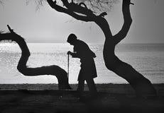Leute und Bäume, ältere Frau, die auf einen Stock geht Lizenzfreies Stockfoto