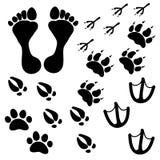 Leute- und Haustierschritte lizenzfreie stockbilder