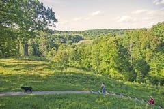 Leute und Hund, die in Natur nahe der Eiche auf einem Hügel, Litauen gehen Lizenzfreies Stockfoto