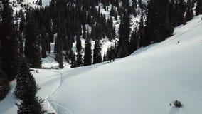 Leute und Hunde gehen in die Berge entlang einem schneebedeckten Weg unter den Tannen Langsam fliege ich oben auf das Brummen stock footage