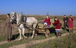 Leute und Pferd gehen über Feld Stockfotos
