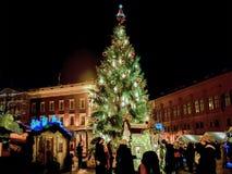 Leute- und Weihnachtsbaum am Markt in Riga wölben sich Quadrat Lizenzfreies Stockfoto