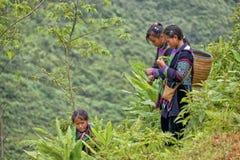 Leute von Sa-PA in Vietnam Lizenzfreie Stockbilder