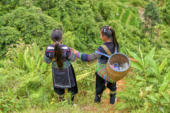 Leute von Sa-PA in Vietnam Stockfoto