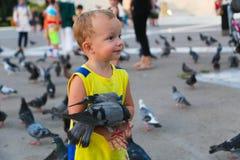 Leute ziehen Tauben ein Lizenzfreies Stockbild