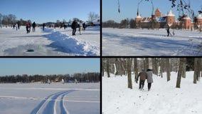 Leuterochen auf Eis im Winter Eissurfer Spielerische Paare stock video