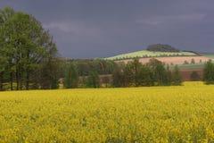 Leutersdorf w górnym Lusatia Fotografia Royalty Free