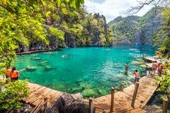Leutetouristen, die am Kayangan See in Coron-Insel, Palawan, die Philippinen schwimmen stockfotografie