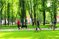Leuteweg im Park Lizenzfreie Stockfotos