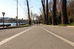 Leuteweg im Park lizenzfreie stockbilder