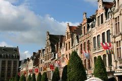 Leuven Royalty-vrije Stock Afbeelding