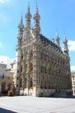 Leuven Royalty-vrije Stock Foto