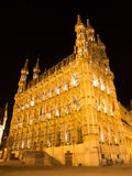 Leuven - Gothic town hall Royalty Free Stock Photo