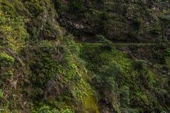 Levada в горах от Мадейры, вулканического острова от Португалии Стоковая Фотография