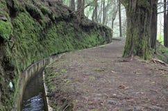 Levada острова Мадейры, типа оросительных каналов, Португалии Стоковое Изображение