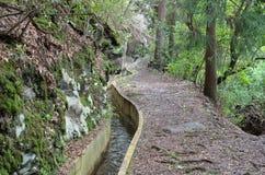 Levada острова Мадейры, типа оросительных каналов, Португалии Стоковые Фотографии RF