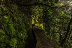 Levada in the mountains from Madeira, volcanic island from Portugal Royalty Free Stock Photos