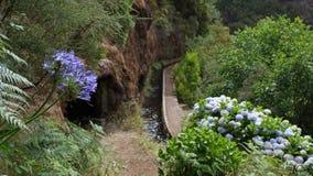 Free Levada Da Rocha Vermelha , Madeira Royalty Free Stock Image - 44284396