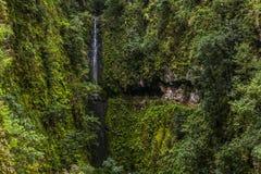 Levada dans les montagnes de Madère, île volcanique du Portugal Photos stock
