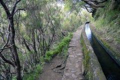 Levada das 25 fontes, touristic hiking trail, Rabacal, Madeira island, Portugal. Irrigation Royalty Free Stock Photos
