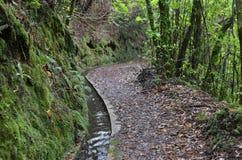 Levada de l'île de la Madère, type de canaux d'irrigation, Portugal Image stock