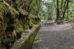 Levada de l'île de la Madère, type de canaux d'irrigation, Portugal Photos stock