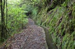 Levada de l'île de la Madère, type de canaux d'irrigation, Portugal Images libres de droits
