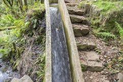 Levada do Poco Bezerro, wild water, touristic hiking trail, Ribeiro Frio, Madeira island. Portugal Royalty Free Stock Image