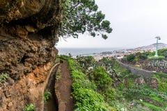 Levada Dos托诺斯,马德拉岛 免版税库存图片