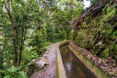 Levada Dos Tornos, Madeira Imagenes de archivo