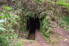 Levada Dos Tornos, Madeira Fotos de Stock Royalty Free