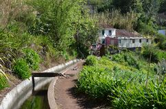 Levada dos Tornos: Monte to Camacha, type of irrigation canals, Madeira, Portugal.  stock image