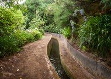 Levada faz Norte perto de Boca da Encumeada na ilha de Madeira Imagem de Stock Royalty Free