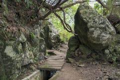 Levada Forado, touristic hiking trail, difficult part, Ribeiro Frio, Madeira island, Portugal. Levada Forado, touristic hiking trail, difficult part, Ribeiro Royalty Free Stock Photography
