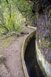 Levada Forado, touristic hiking trail, Ribeiro Frio, Madeira island, Portugal stock photography