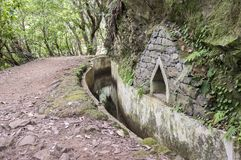 Levada Forado, touristic hiking trail, Ribeiro Frio, Madeira island, Portugal. Levada Forado, touristic hiking trail, Ribeiro Frio, Madeira island, touristic Stock Image