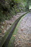 Levada - geben Sie mit einem Graben um, um Wasser in Madeira auf dem Abhang zu sammeln Stockfoto