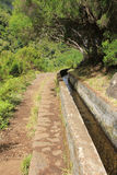 Levada in Madeira royalty free stock photos