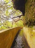 Levada sul Madera Fotografie Stock Libere da Diritti
