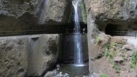 Free Levada Walk , Madeira , Portugal Stock Image - 44502491