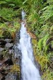 Levada Wasserfall Lizenzfreie Stockfotografie
