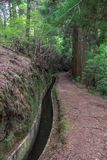Levada-Wasserkanal Stockbilder