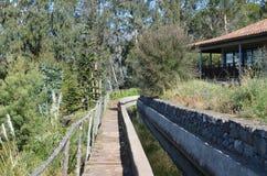 Levadados Tornos: Monte aan Camacha, type van irrigatiekanalen, Madera, Portugal Royalty-vrije Stock Foto's