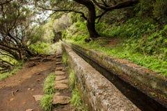 Levadas del canale di irrigazione Foresta tropicale nelle montagne sull'isola del Madera Fotografie Stock Libere da Diritti