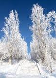 Levage scénique en stationnement de l'hiver Photo libre de droits