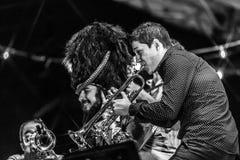Levande konsert för Vinicio capossela i Italien, Calitri arkivbild