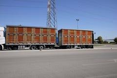 Levande lastbilar för djur transport Arkivbild